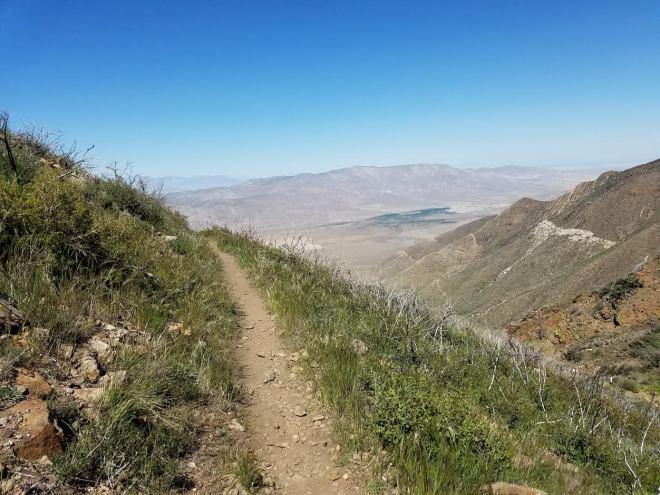 desertlandscape1